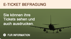 E-ticket befragung