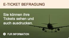 E-ticket befragung