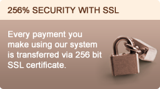 256% security with ssl